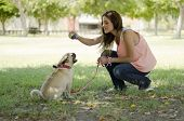 pic of pug  - Young beautiful woman and her pug dog playing with a ball at a park - JPG