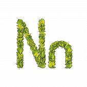 picture of storybook  - Leafy storybook font depicting a letter N in upper and lower case - JPG