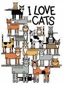 Постер, плакат: Я люблю кошек