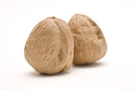 picture of testicle  - Two walnuts on a white background. Potential representation of testicles for a cancer awareness campaign as a symbol for man bravery or bravado.