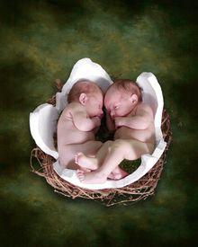 stock photo of twin baby  - two newborns inside cracked egg fantasy portrait - JPG