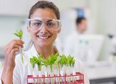 Close-up of a smiling female scientist analyzing young plants at the laboratory