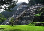 image of mayan  - mayan temple ruins at Palenque in Mexico - JPG