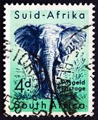 Postage Stamp South Africa 1954 African Elephant, Animal