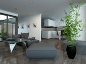 Modern living room interior with houseplant