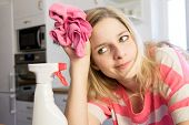 picture of housekeeper  - Housekeeping - JPG
