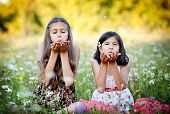stock photo of sisters  - Two sisters laughing and playing in green sunny park