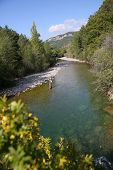 pic of fly rod  - Upper view of fly fisherman fly - JPG