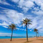 picture of manga  - Playa Paraiso beach in Manga Mar Menor Murcia at Spain - JPG