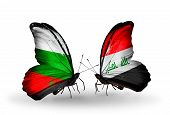 foto of iraq  - Two butterflies with flags on wings as symbol of relations Bulgaria and Iraq - JPG