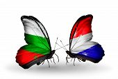 stock photo of holland flag  - Two butterflies with flags on wings as symbol of relations Bulgaria and Holland - JPG