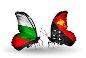 picture of papua new guinea  - Two butterflies with flags on wings as symbol of relations Bulgaria and Papua New Guinea - JPG