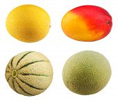 picture of muskmelon  - Fresh Mango fruit - JPG