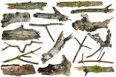 picture of ugly  - Clumsy rough ugly forest wooden artifacts isolated collage - JPG