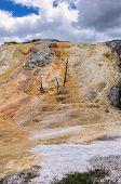 image of mammoth  - Yellowstone - JPG