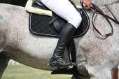 stock photo of horse-breeding  - Close up of sportsman sitting on the horse during competition - JPG