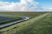 foto of dike  - Curved country road next to a high dike with grazing sheep - JPG