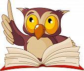 Постер, плакат: Книга чтения Мудрая Сова
