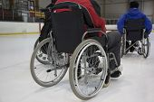 pic of paralympics  - The invalid person on the wheelchair on the ice - JPG