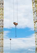 stock photo of crane hook  - Masts and hooks of the tower cranes - JPG