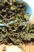 foto of nettle  - Closeup of dried nettle pouring out of blue dish on wooden cutting board  - JPG