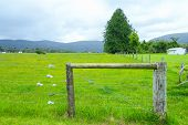pic of campervan  - A gate made of three logs and metal wires enclose a big green grass field in summer - JPG