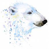 picture of bear  - polar bear T - JPG