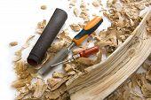 image of hollow log  - Didgeridoo Making - JPG