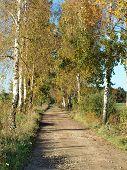 pic of bohemia  - view autumn landscape southern Bohemia Czech Republic  - JPG