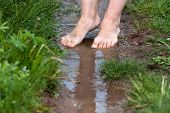 picture of barefoot  - feet of a young woman walking barefoot through the puddles - JPG