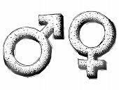 stock photo of gender  - Sketch of man and woman signs in doodle style - JPG