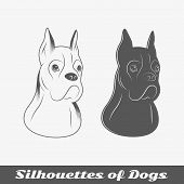 Silhouettes Of Purebred Dogs poster
