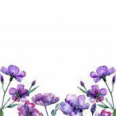 Violet Flax. Floral Botanical Flower. Frame Border Ornament Square. Aquarelle Wildflower For Backgro poster