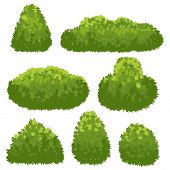 Nature Hedge, Garden Green Bushes. Cartoon Shrub And Bush Vector Set Isolated On White Background. L poster