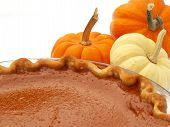 image of pumpkin pie  - pumpkin pie and mini pumpkins - JPG