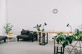 Interior Of Modern Office With Furniture, Plants And Clock On Wall poster