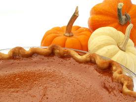 picture of pumpkin pie  - pumpkin pie and mini pumpkins - JPG