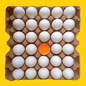 Thirty Eggs Carton & Cracked Egg Half With Yolk Top View Isolated On Yellow Background. Broken And W poster