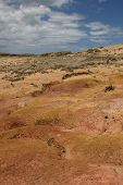 Bright Orange, Yellow And Pink Clay Hill At Cape Reinga In New Zealand, Beside Cape Maria Van Diemen poster