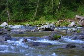 A Small Mountain River Swiftly Flowing Around The Stones In Its Path, Flows Through The Morning Fore poster