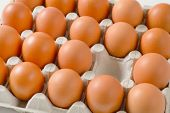 Carton of fresh brown eggs, one egg missing poster