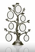 Metal Family Tree With Frames