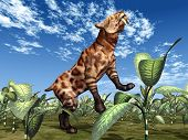 picture of saber tooth tiger  - Computer generated 3D illustration with the prehistoric Saber - JPG