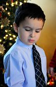 In Tie By The Christmas Tree