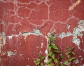 Old Wall With Cracks And Nettle Runaways poster