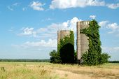 foto of silos  - Two old silos covered in green vines sit abandoned in a hay field - JPG