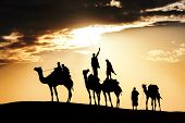 pic of caravan  - Camel caravan silhouette through the sand dunes - JPG
