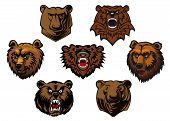 stock photo of grizzly bear  - Brown grizzly or bear heads mascots with different expressions from curious to fierce and snarling - JPG