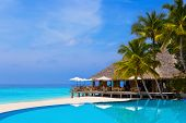 stock photo of kuramathi  - Cafe and pool on a tropical beach  - JPG