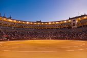 pic of bullfighting  - Bullfighting arena  - JPG
